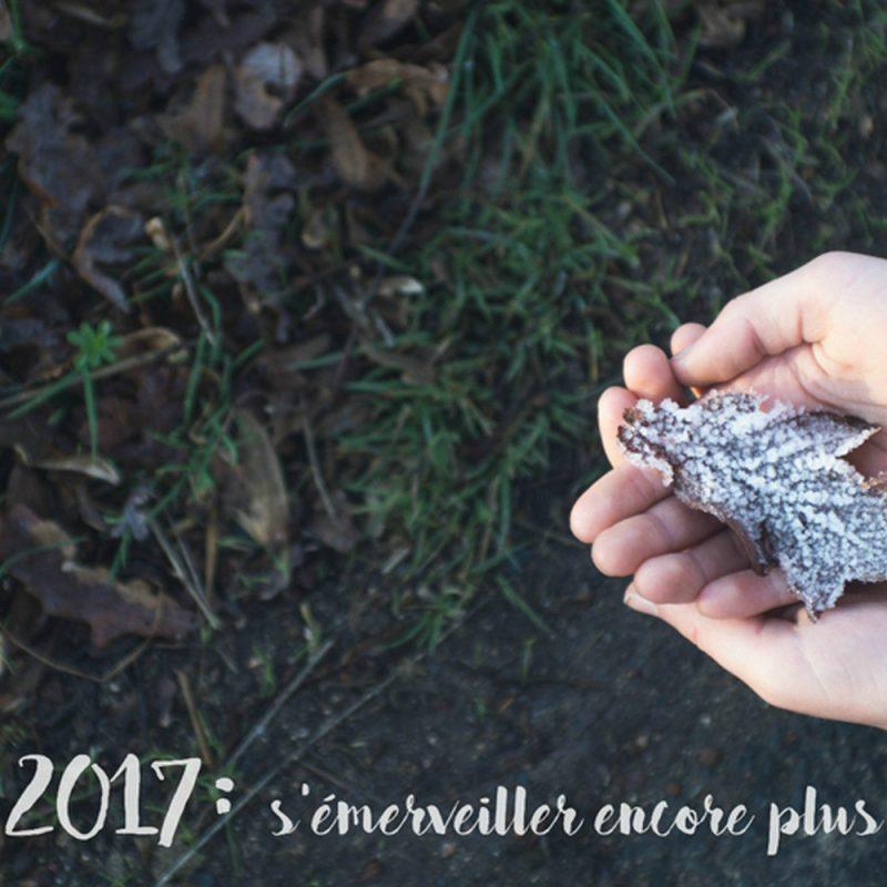 Nos voeux pour 2017