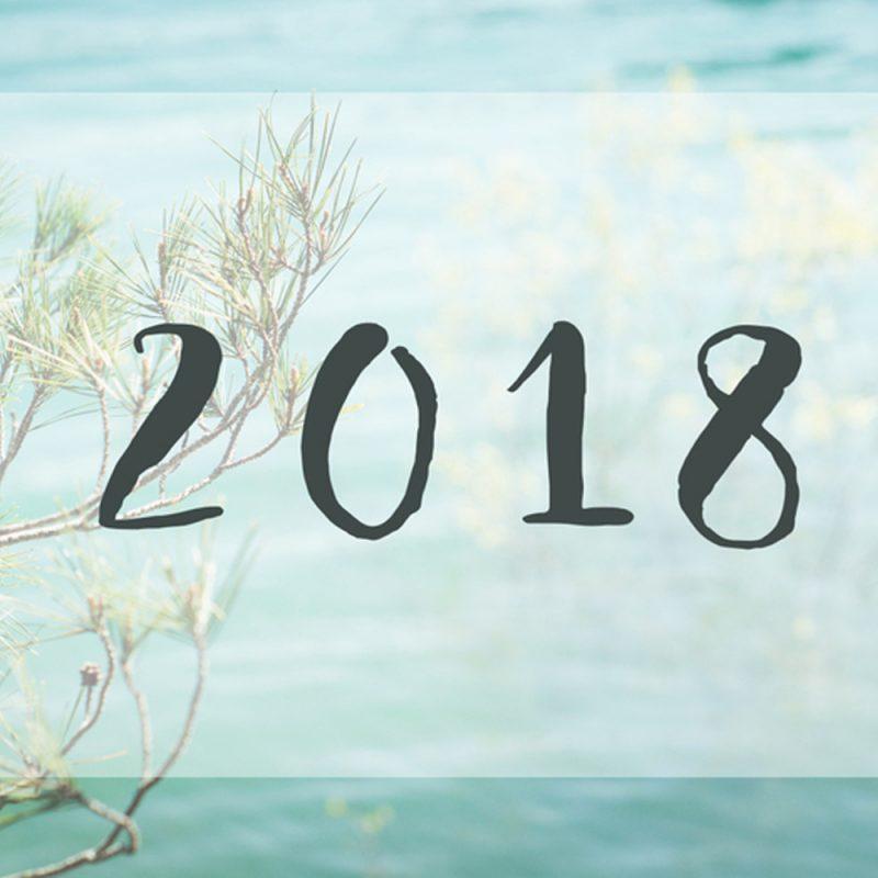 Bonne année 2018 par Minabulle